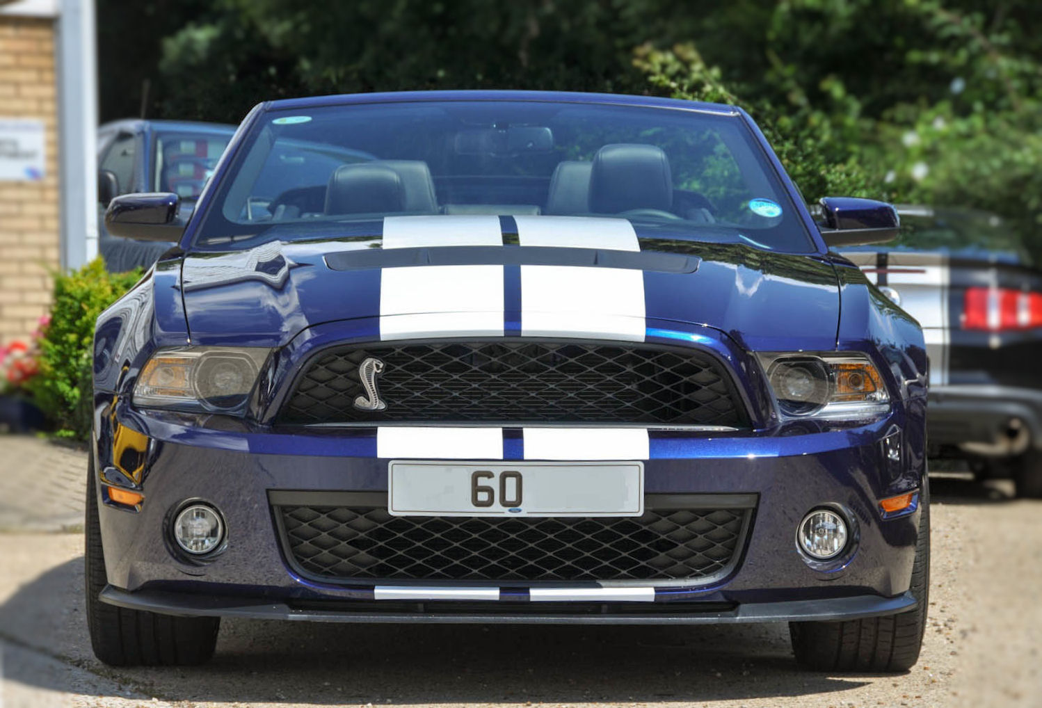2015 Ford F 150 For Sale >> 2011 (60) Ford GT500 Mustang Shelby Convertible, 1,900 ...