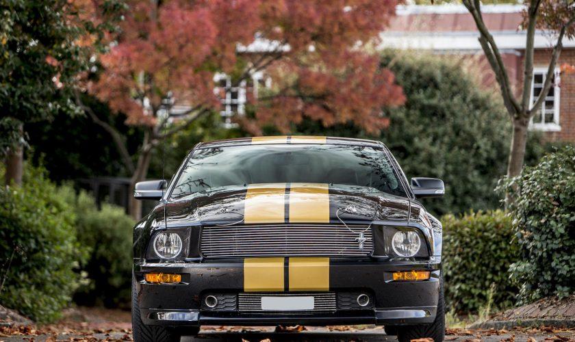 Mustang Shelby Hertz GT-H