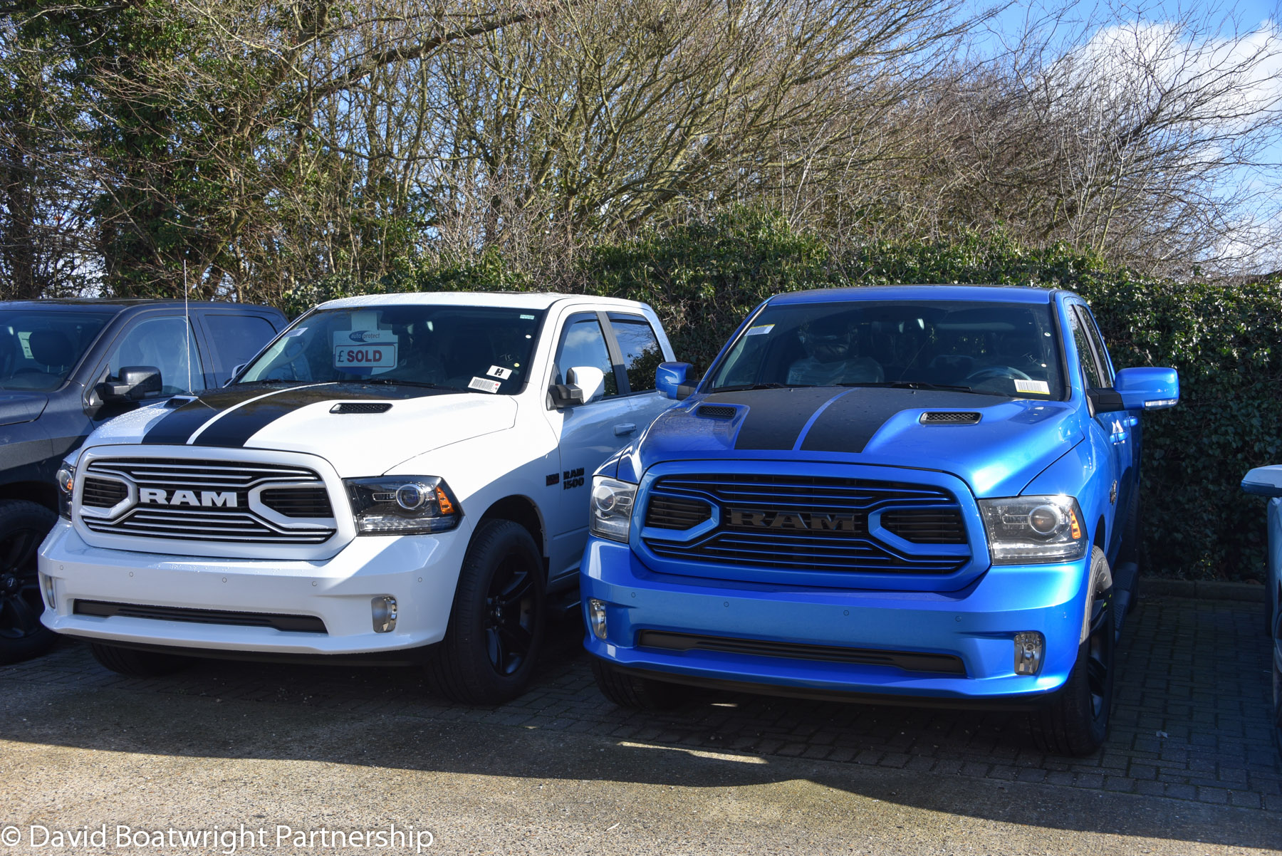 Hydro Blue Ram Limited Edition 2018 David Boatwright